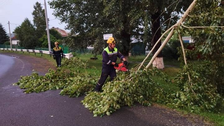 В Кемерово почти 2000 домов остались без электричества из-за грозы