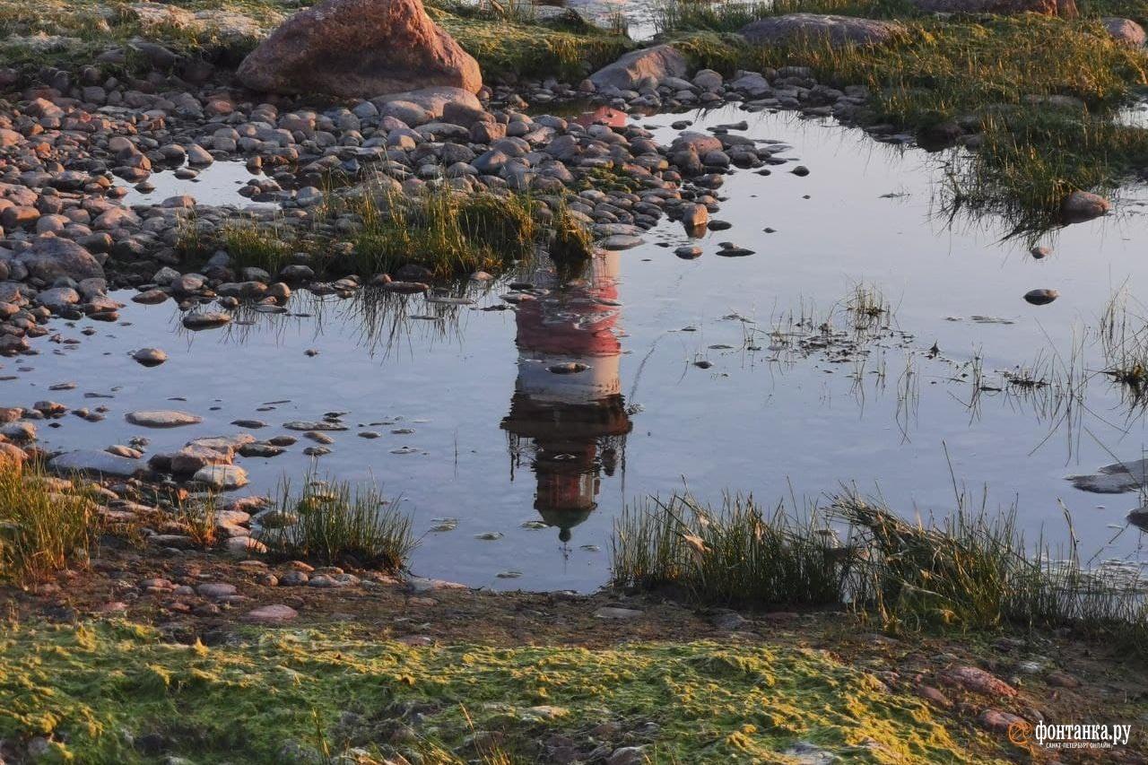Старый Крым — новые впечатления, Или как происходят открытия в открытом мире, отзыв от туриста sheftali на Туристер.Ру