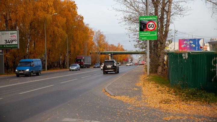 В Тюменской области объявили о нерабочих днях и новых ковидных запретах. Изучаем официальный документ