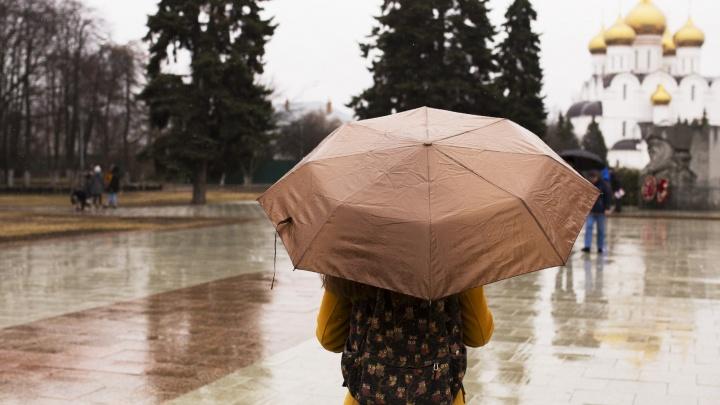 МЧС дало экстренное предупреждение о сильных дождях в Ярославской области