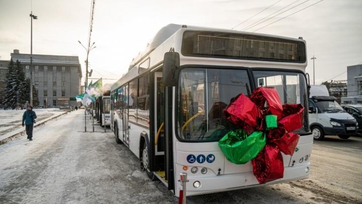 Мэрия Новосибирска заключила договор на покупку 40 новых автобусов
