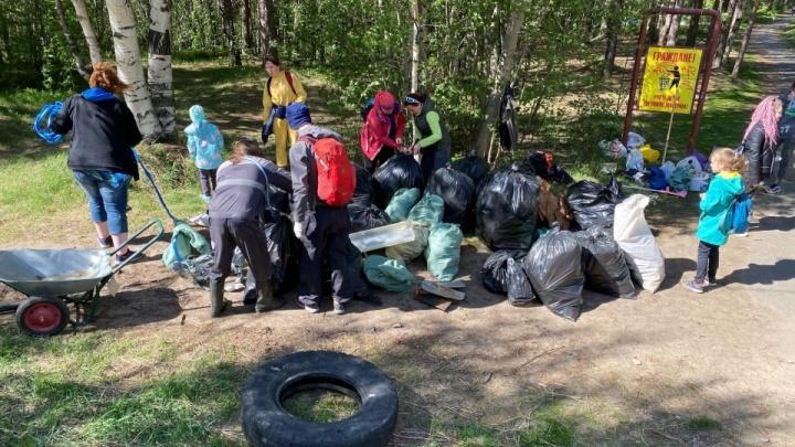 Северодвинцы снова прибрали Ягры, где скоро посадят ели. Среди мусора много одноразовых мангалов