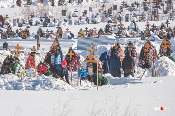 Так сейчас выглядит Северное кладбище — одно из самых больших в России