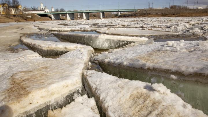 Которосль проснулась: ярославская река стала похожа на ледяную мозаику