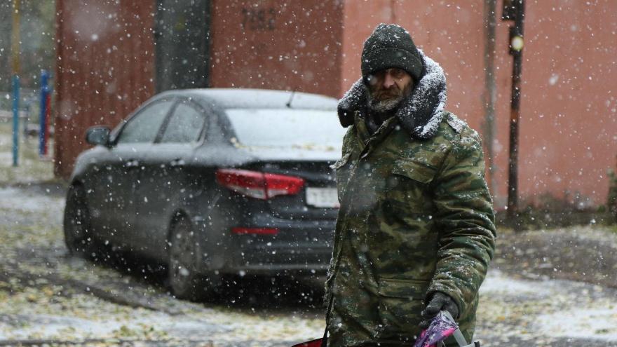 Снеговики из листьев: фоторепортаж о первом снегопаде для тех, кто пропустил