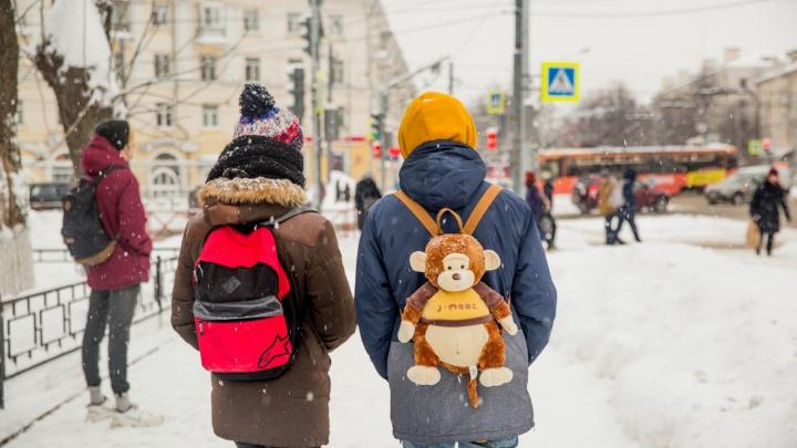 В Ярославской области школьникам разрешили не идти на учебу из-за погоды