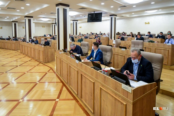 Депутаты гордумы выбрали 11 из 33 кандидатов в Общественную палату