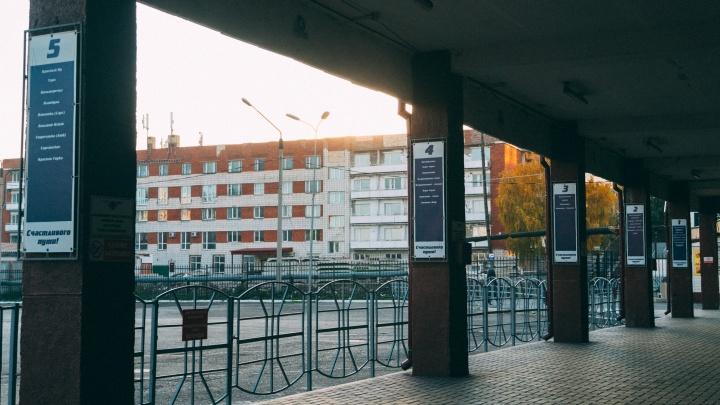 Онлайн-продажу билетов на сайте омского автовокзала пообещали восстановить до конца дня