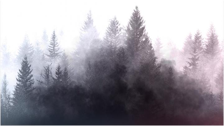 Чем опасен для населения смог в городе: в Красноярском крае активно тушат лесные пожары