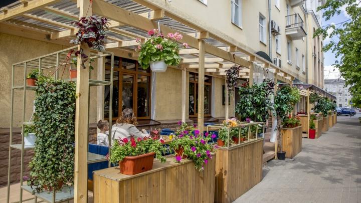 Буйство цветов, гамаки и кресла: как в ярославских кафе обустроили летние веранды