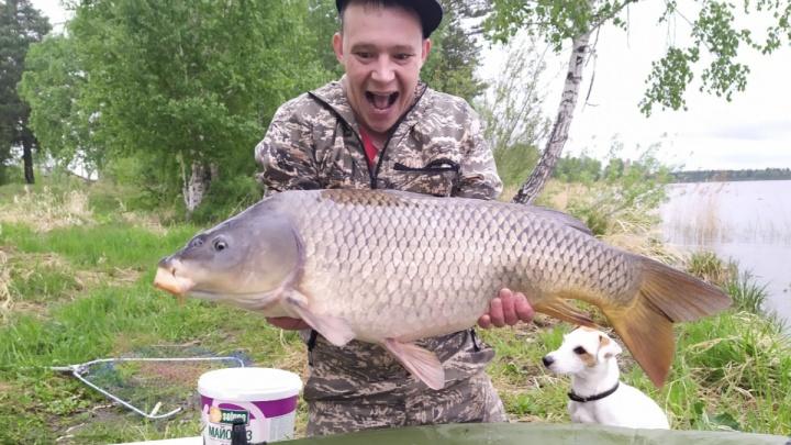 10 кг в одни руки: в Красноярском крае начали действовать новые правила для рыбаков