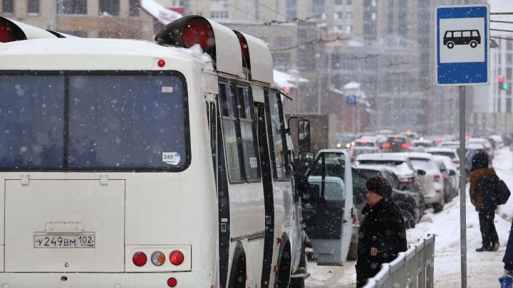 «Еще в трусы себе карту зашейте»: в Уфе водитель маршрутки нахамил пассажирке за отказ платить наличкой
