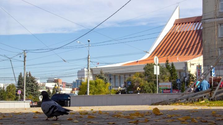 В Омской области неожиданно потеплеет до +14 градусов