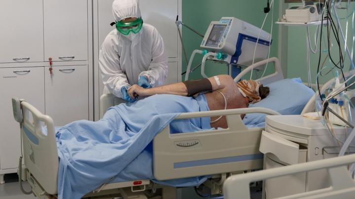 Одиннадцать умерших, 281 заболевший: в Волгограде безостановочно растет число пораженных COVID-19