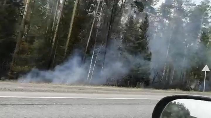 Под Екатеринбургом горят леса