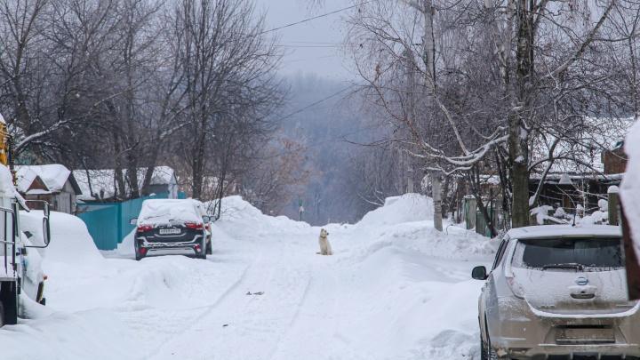 «Мы живем здесь больше 50 лет»: уфимцы боятся строительства дороги от Комсомольской до «Салаватки»
