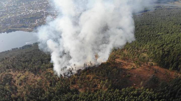 Глава района в Башкирии ищет крепких мужчин для тушения пожаров