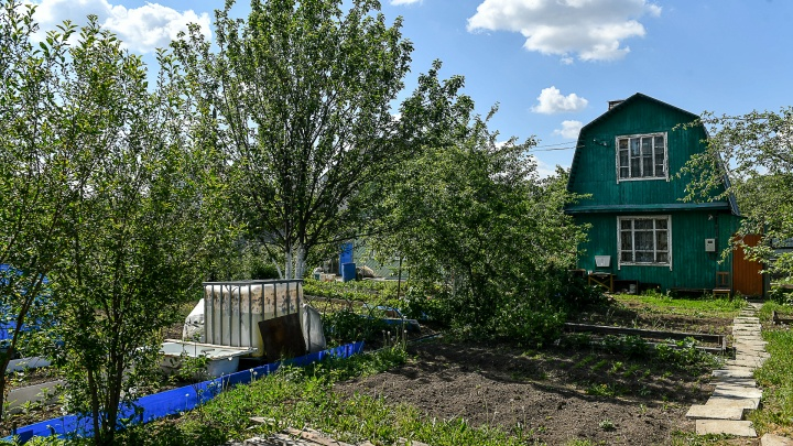 Не откладывайте до весны: простые советы, как осенью преобразить садовый участок и сэкономить
