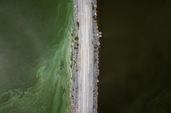 Цвет водоема кардинально изменился. Слева на фото — вода с предполагаемым загрязнением, справа — практически без