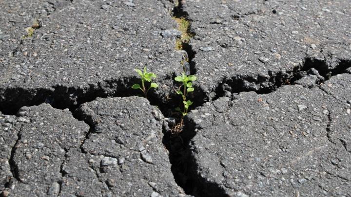 Ремонт дорог в дождь: чем недовольны горожане и что говорят сами подрядчики