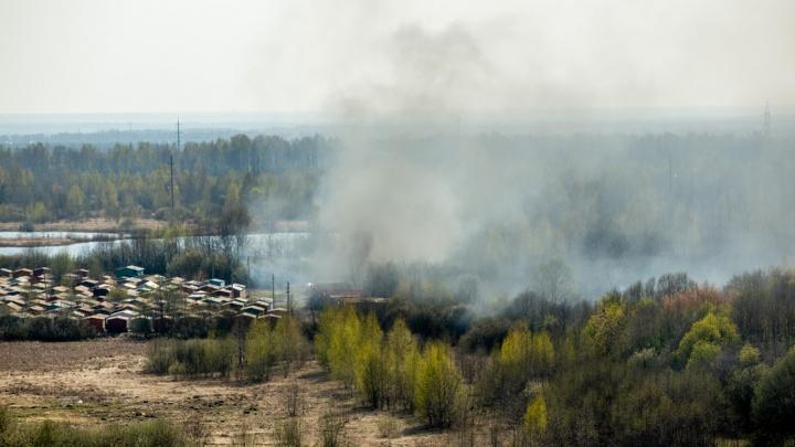 Грядет жара за 30 градусов: МЧС объявило чрезвычайную пожароопасность