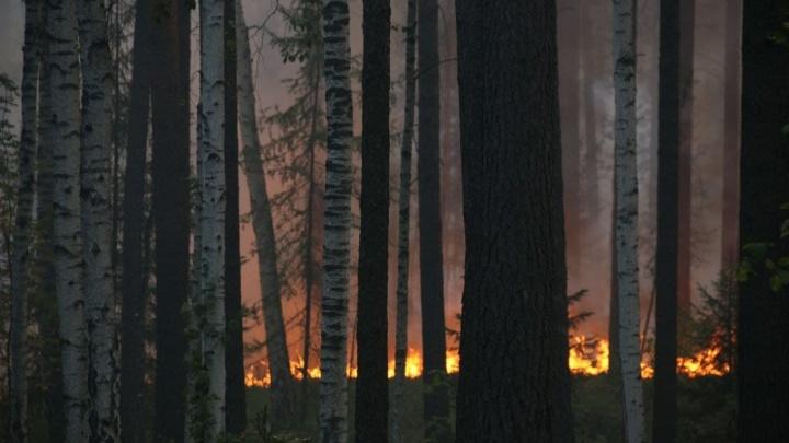 Свердловскую область сравнили с другими регионами на карте пожаров. Больше огня только в Якутии