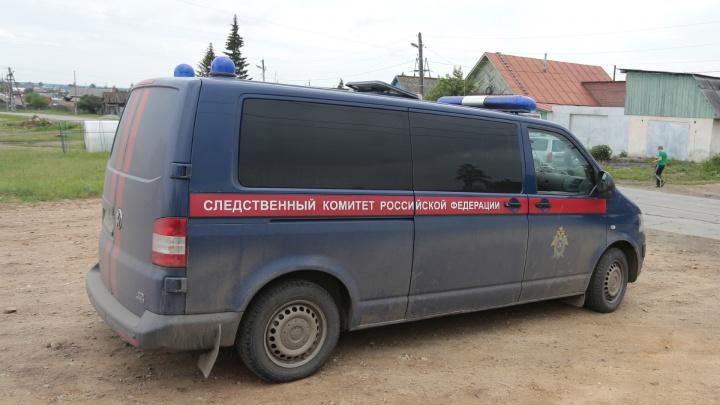 Жительницу Челябинской области осудили за попытку заказать убийство бывшего мужа