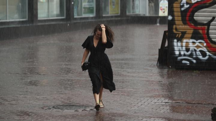 Дождь, ветер, гроза: новосибирские синоптики обещают холодные выходные