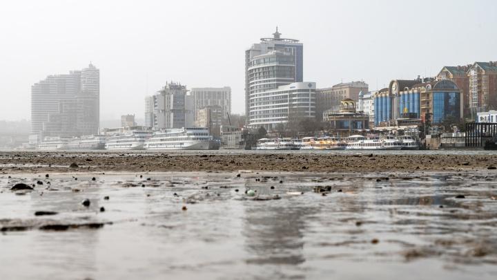 Водоканал: чтобы вода в Ростове не воняла рыбой, нужен новый источник — не Дон