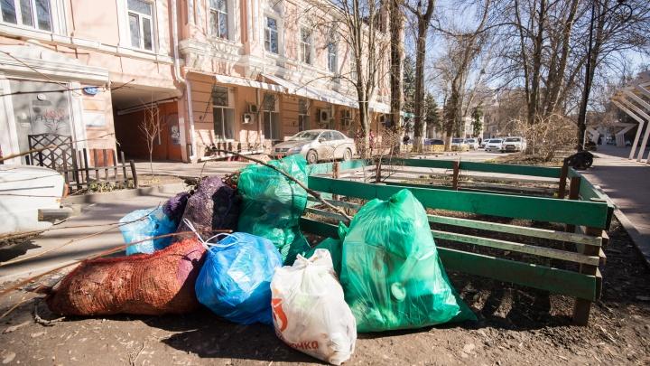 Мусор из 13 районов Ростовской области свезут к парку с краснокнижными птицами