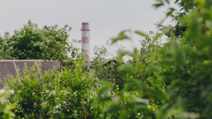 Заводские ароматы, трубы на горизонте и сотни пионов: исследуем СНТ в промзоне Челябинска