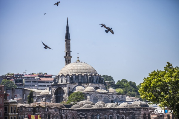 Рост заболевших COVID-19 в Турции начался в апреле