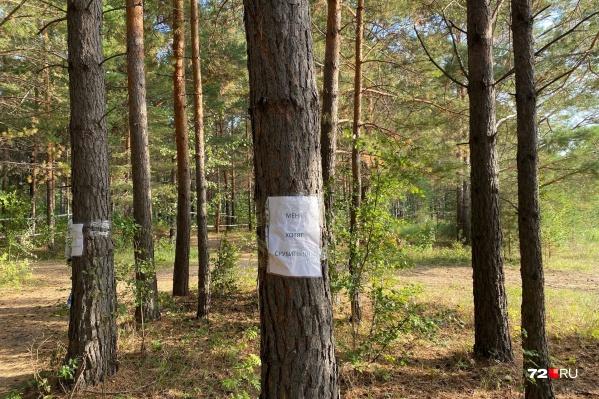 Жители поселка самостоятельно развесили таблички в надежде, что администрация обратит внимание на их проблему