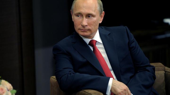 Владимир Путин и Сергей Шойгу прибыли на полигон в Мулино