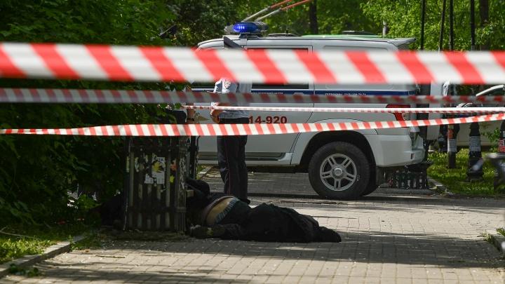 Почему полицейские стреляли в убийцу? Главные вопросы о резне у вокзала