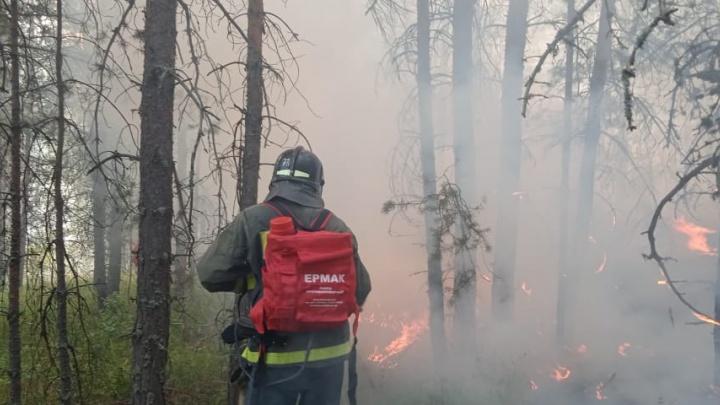 Пожары в Башкирии: огонь бушует в четырех районах республики