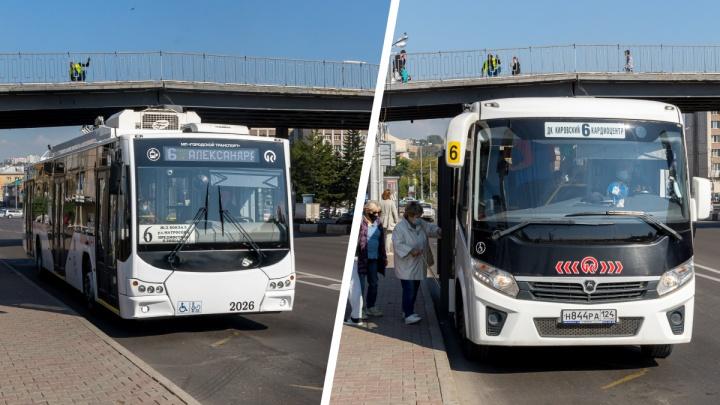 «Не понимаю логику мэрии»: красноярцы путают троллейбус без рогов с автобусом — оба шестые