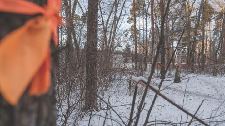 Пермские депутаты приняли изменения в ПЗЗ, позволяющие строить гостиницу РЖД в Черняевском лесу