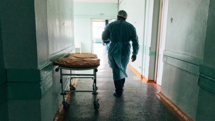 Коронавирус стал причиной увольнения более 400 омских медиков