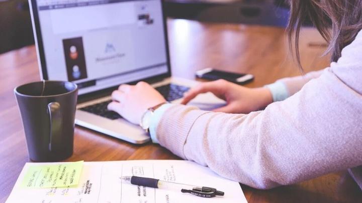 Зачем нужны реферальные программы: инструкция, как их внедрить в бизнес и получить больше клиентов