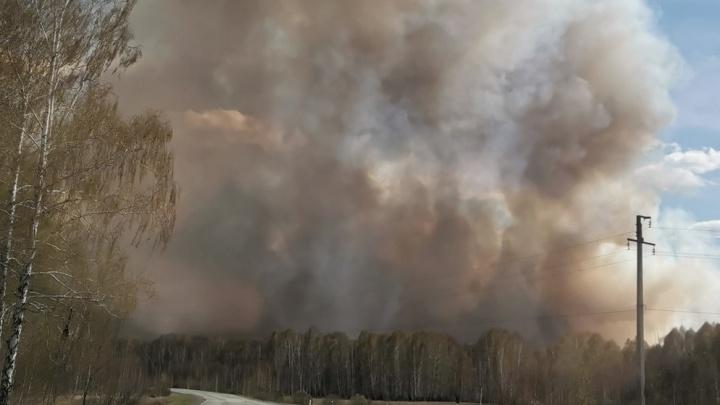 «Любой объект за минуту сгорит при таком ветре»: в Челябинской области тушат два десятка лесных пожаров