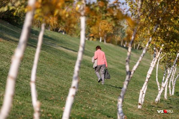 Росгидромет обещает — температура в начале осени будет ниже климатической нормы