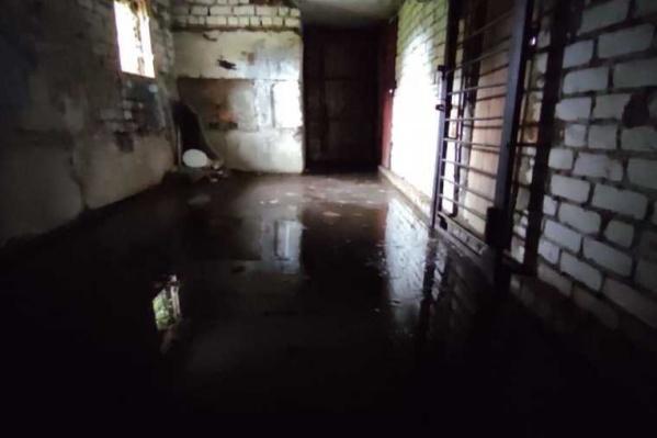 Вонючая вода постепенно уходит из подвалов домов