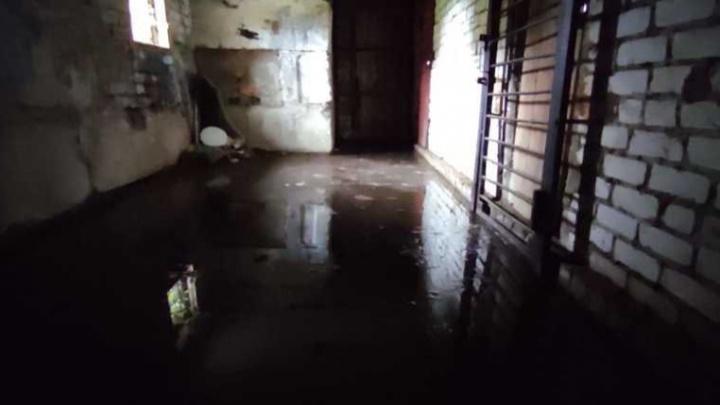 «Жижа сама уйдет»: в Ярославской области коммунальщики остановили фекальные реки