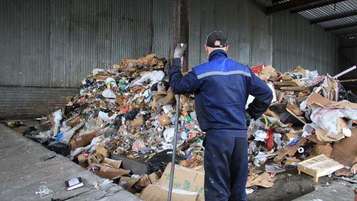 В Архангельске поставят новые контейнеры для РСО, но неизвестно, что с мусором будет потом