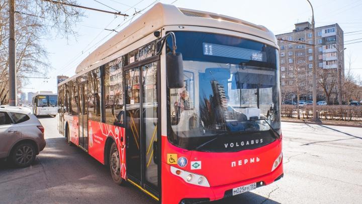 В Перми 10 автобусных маршрутов переведут на расписание выходного дня