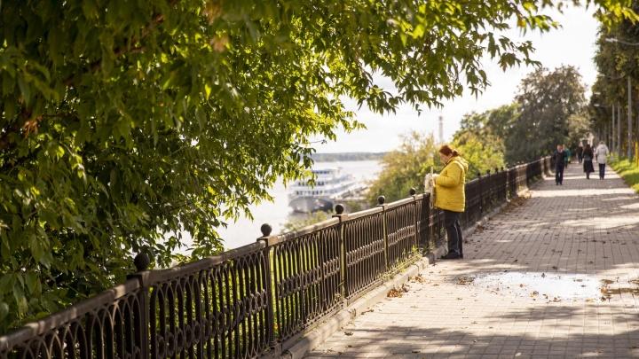 Ламповый сентябрь: 11 кадров залитого осенним солнцем Ярославля