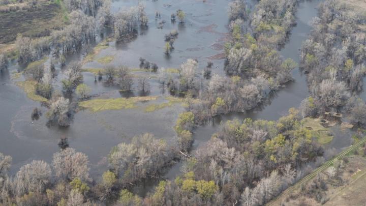 Река вышла из берегов: в Волгоградской области начинается паводок