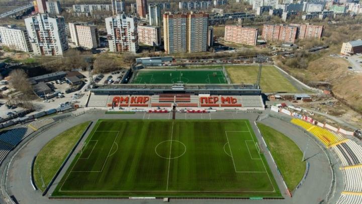На пермском стадионе «Звезда» ввели требования для детей: они смогут пройти на матч с ПЦР-тестом