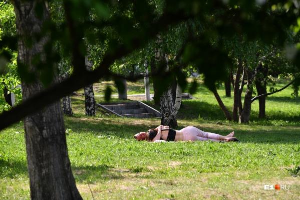 Что может быть лучше, чем лежать на траве под теплым солнцем?